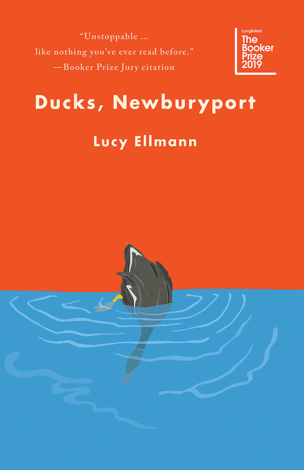 cover of Ducks, Newburyport